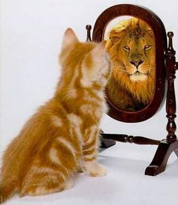 Как выбрать зеркало, которое не лжет