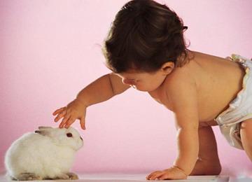 Домашние животные продлевают жизнь и делают нас счастливее