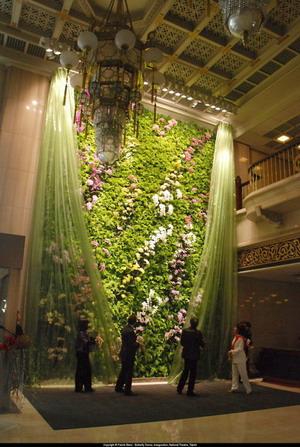 Вертикальный сад Патрика Бланка Butterfly Dance