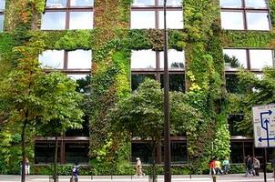 Вертикальное озеленение стен музея современного искусства Quai Branly, Париж