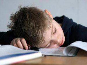 Школа и домашнее обучение